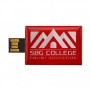 Originele USB stick 2GB